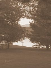 Lamoine lodge photo - .View of Acadia & Cadillac Mountain from back yard
