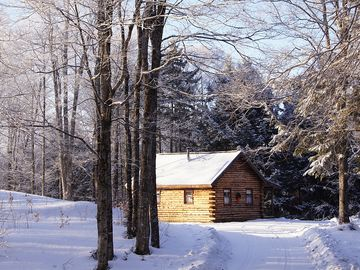 Little Cabin in the Woods, Birch meadow