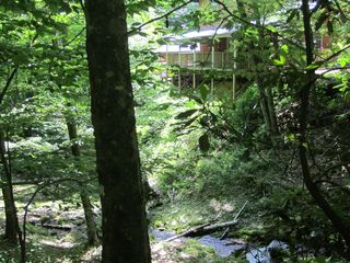 Maggie Valley cabin photo - View from driveway of cabin with creek