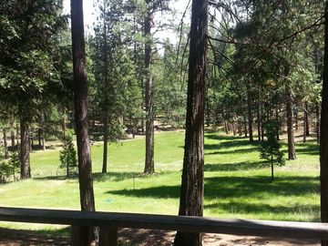 Yosemite National Park cabin rental - View from deck May 2015