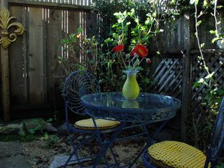 Pacific Grove cottage photo - Tranquil backyard in winter