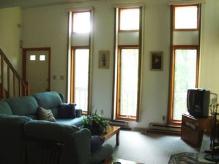 Bushkill house photo - Living Room