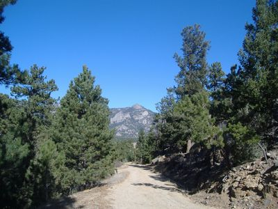 Private Road to Pine Cone Cabin. House is on the Left