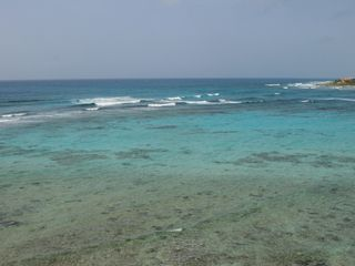 Akumal condo photo - Just Off Our Beach: Perfect Snorkeling