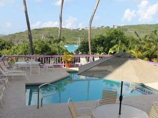 Cruz Bay condo photo - Enjoy lounging around the pool while enjoying the serene harbor views.