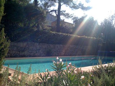 House in a hectare of century-old pine and olive trees, swimming pool