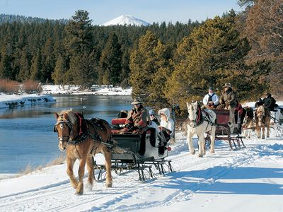Sleigh rides in the Winter