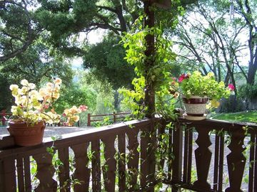 Atascadero cottage rental - View from the porch of the Guest House.