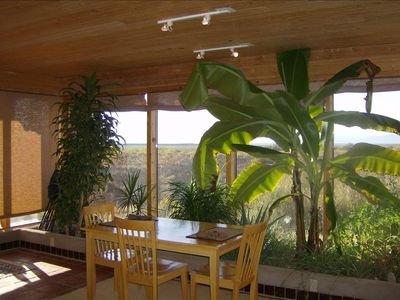 Dining With a View and With the Bananna Plant!