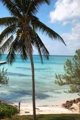Grand Cayman condo photo - Retreat #33 - Ocean View from Living Room