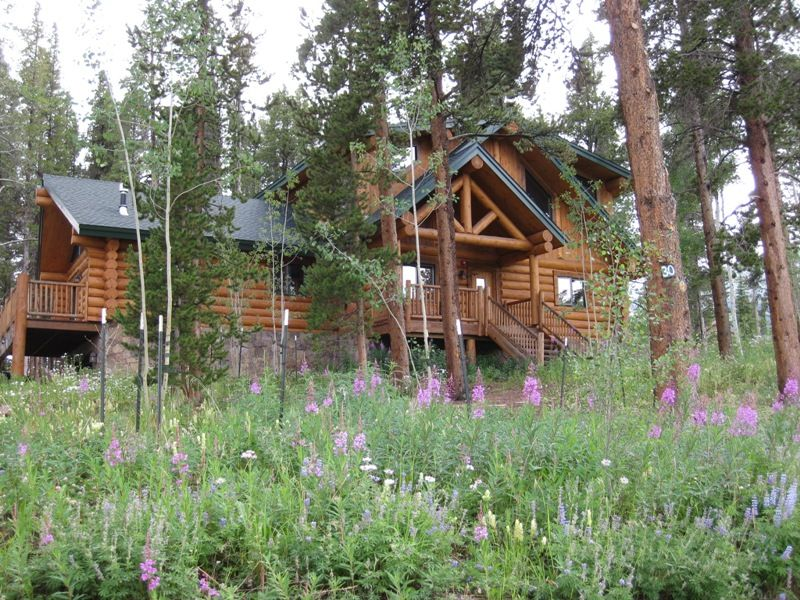 Check - Small log houses dream vacations wild ...