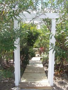 Inviting Pathway to L'il Gecko Cottage
