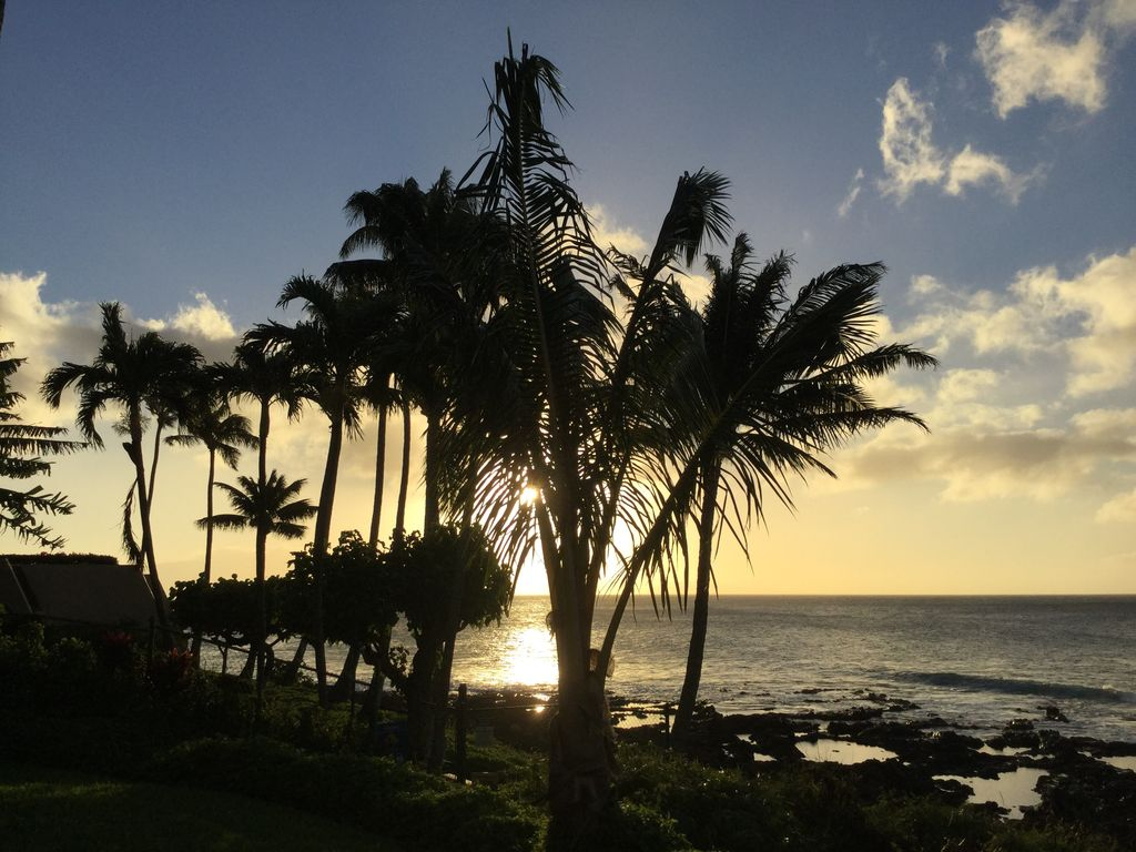 Another beautiful Maui sunset.  A nightly tradition at Napili Shores Resort!