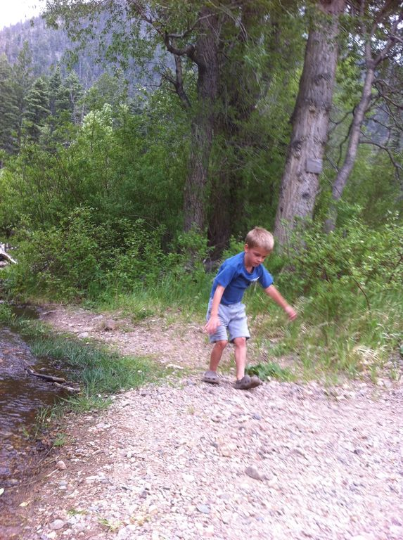 We hike on the ski mountain trails in the summer.