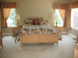 Main Level Master Suite - Lake Anna house vacation rental photo