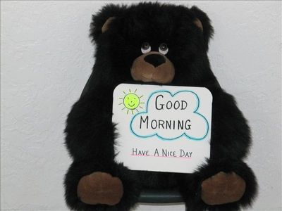 Have a Nice Day Bear