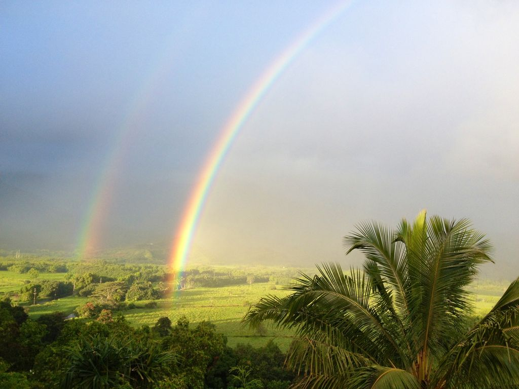View of Rainbow on the road to Hanalei
