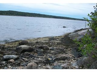 Steuben house photo - The rocky Maine Shore line..