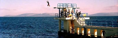 Salthill - Blackrock diving board