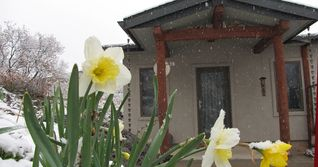 Glenwood Springs cabin photo - Spring @ The Bear's Den