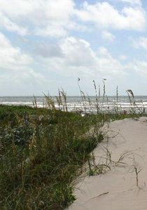 The fabulous Gulf of Mexico is right outside your door. Just a short walk away!