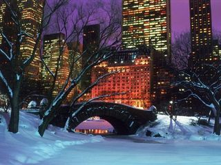 Midtown Manhattan apartment photo - Central Park during Winter