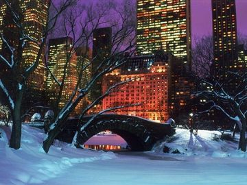 Central Park during Winter