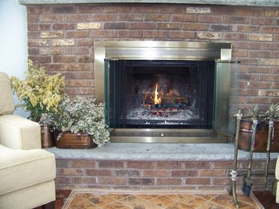 Tobyhanna house rental - Fireplace
