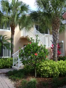 Entrance to 2nd floor condo showing paver walk, flowering shrubs and palm trees.
