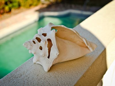 A sea shell sits on the southern balcony overlooking the pool.
