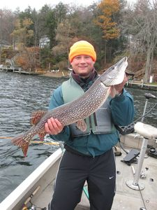 "Did I mention the fishing? Healthy 34"" Northern Pike! One of eight on the day"
