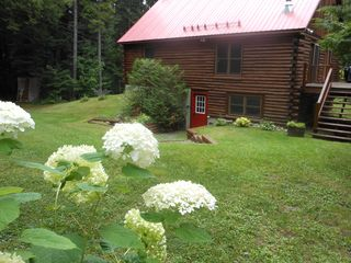 Jay Peak cabin photo - Nature at its best - plenty of space to roam and reflect!