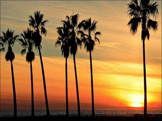 Venice Beach apartment photo - Beautiful Beach Sunsets - just outside the gate