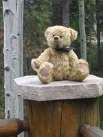 The VRBO Bear relaxes on the deck