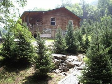 Bryson City cabin rental - View of the cabin from the hot tub.
