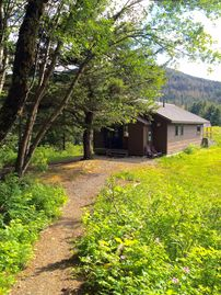 Haines cabin rental - Orca Cabin in spring
