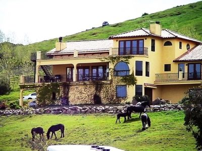 Horses are NOT usually this close to the Villa, but we like the picture:)