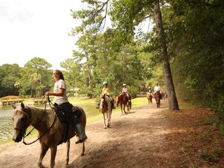 Folly Field villa photo - Horseback riding. Nearby in the Sea Pines Plantation.
