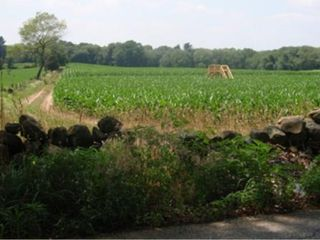 North Stonington house photo - Corn maze in late summer/fall near the fabulous Buttonwood Ice Creamery