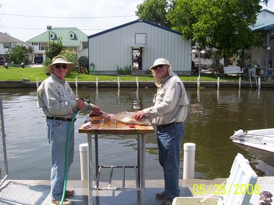 Cleaning Redfish