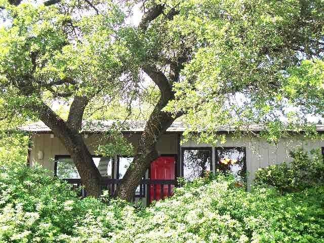 Colorful and FUN 2/1 duplex – two blocks to Zilker Park. King & 2 twins, sleep 6