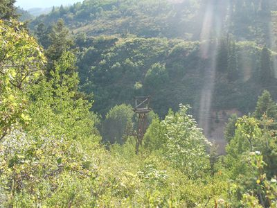 Old Town house rental - View from morning hike in summer time on trails just above the Daly Avenue home