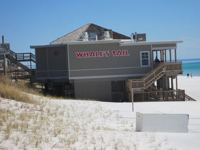 Whales Tail Restaunt and Bar on the Beach