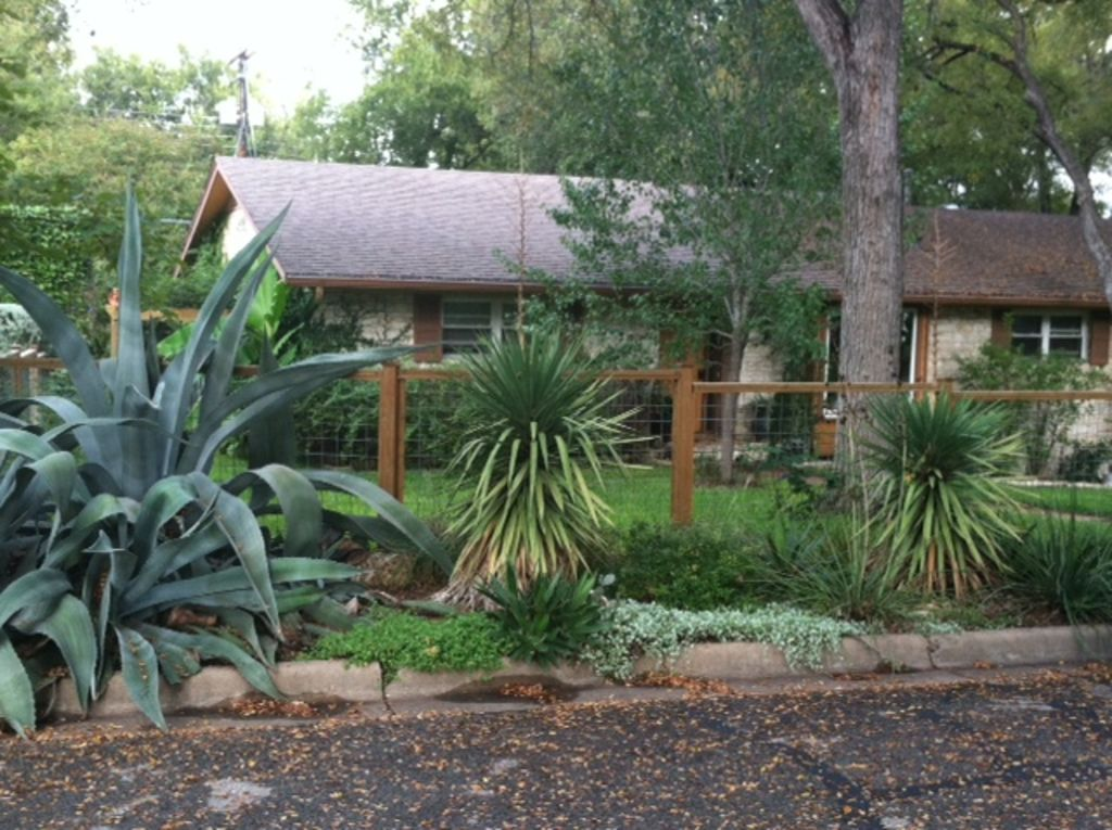 2 Room Suite In Beautiful Barton Hills-Perfect for SXSW, ACL and Barton Springs