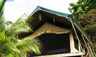 Bocas del Toro cabin photo - eco tent