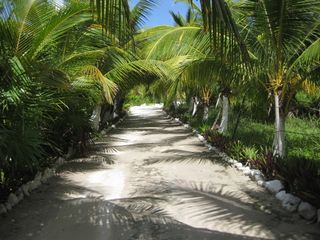 Tulum house photo - Palm Tree Lane to Casa Tranquillo