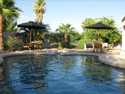 Luxury Oasis Back Yard!  Saltwater pool and spa.   Paml Trees,  Citrus Trees...