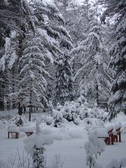 Paul Smiths chalet photo - A true Winter Wonderland!