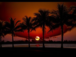 Key West condo photo - Spectacular Key West Sunset by Rick Fatica.