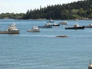 Deer Isle - Stonington house photo - More Boats in a line